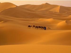 morocco_desert_1